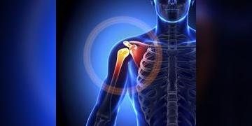 kraakbeen knie herstellen voeding